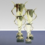 Cups-and-trophies-16