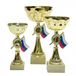 Cups-and-trophies-17