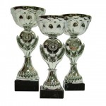 Cups-and-trophies-21